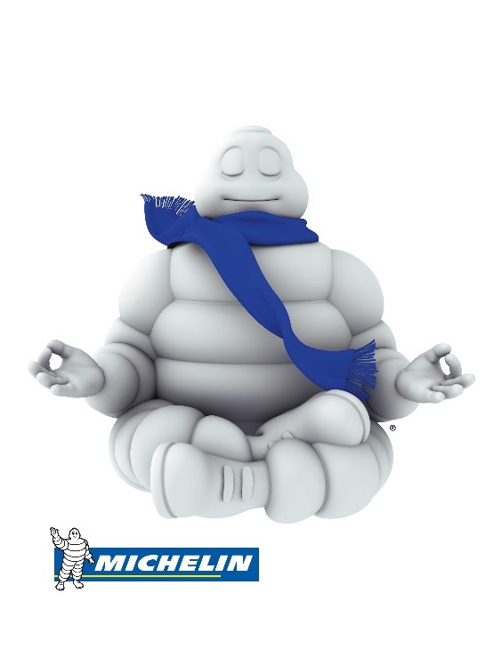 Michelin car tires logo